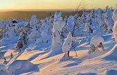 foto of laplander  - Winter sunset on mountain top Lapland Finland - JPG