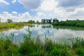 pic of wetland  - Wetland landscape in En Afek Nature Reserve northern Israel - JPG