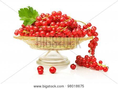 Red Currant On A Glass Plate