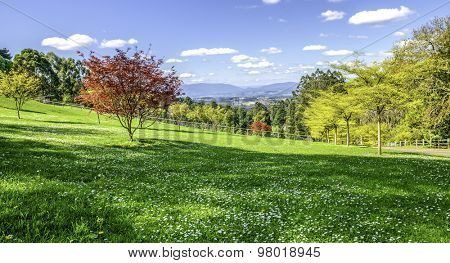 outlook green landscape