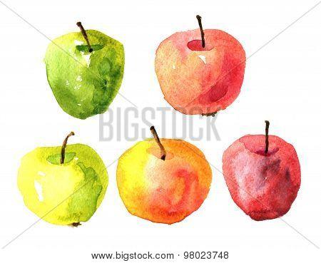 Set of  watercolor drawing apples