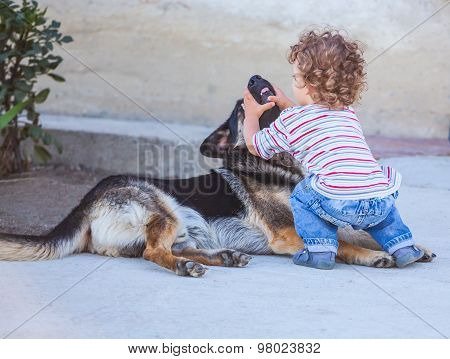 Baby Boy Playing With A Dog