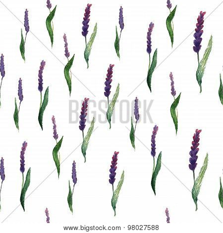 lavender field seamless pattern. Creative design for card, web design background, book cover.