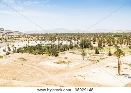 Tafilalt oasis in Morocco - view from Tingheras ksar