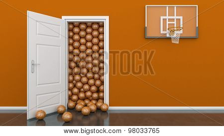 open door with basket ball