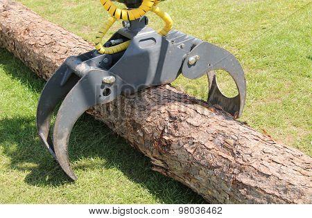Tree Logger.