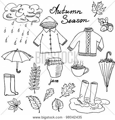 Autumn Season Set Doodles Elements. Hand Drawn Set