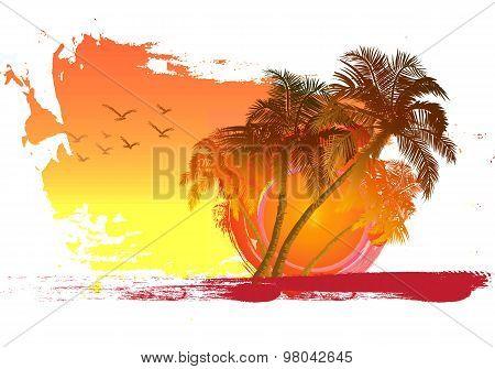 Palm On Sunset Background