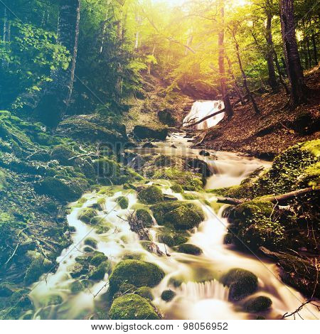 forest waterfall and rocks covered with moss. Filtered image: vintage effect.