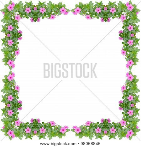 Periwinkle Frame Isolated On White Background