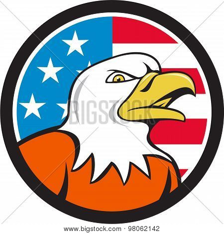 American Bald Eagle Head Angry Flag Circle Cartoon