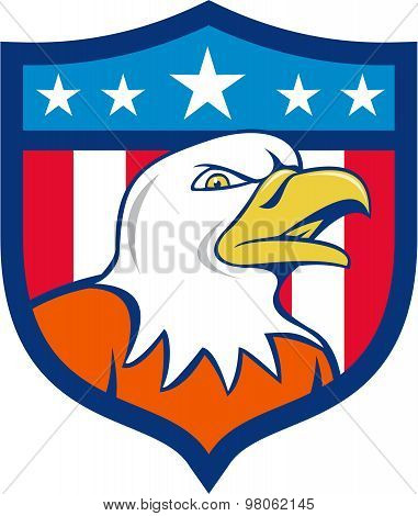 American Bald Eagle Head Angry Flag Crest Cartoon