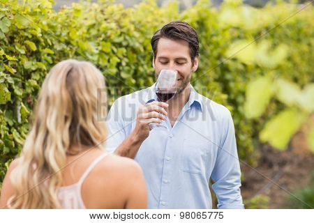 Young happy couple tasting wine in the grape fields