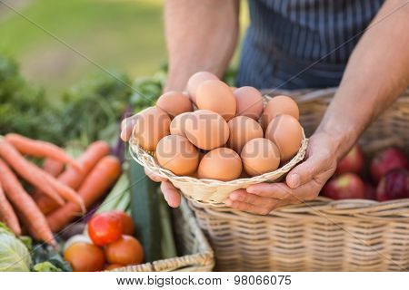 Close up view of farmer hands holding a basket of eggs