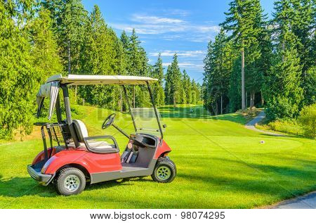 Golf carts on a golf course