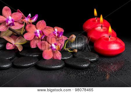 Beautiful Spa Still Life Of Blooming Twig Red Orchid Flower, Phalaenopsis With Water Dew And Candles