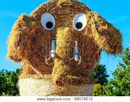 Straw puppet after grain harvest