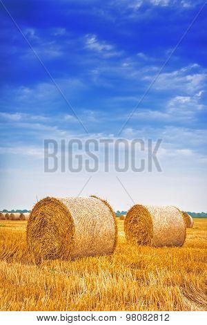 Hay Bale Rolls In Field