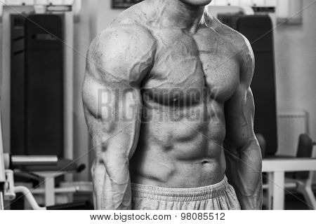 Muscular guy working with free weights. Work on the arm muscles.