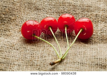 Red Cherry Bunch On Hessian Background