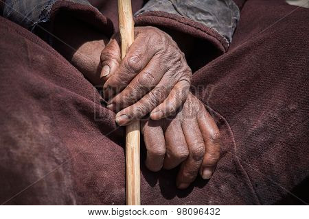 Old Tibetan Man Hand. Ladakh, India