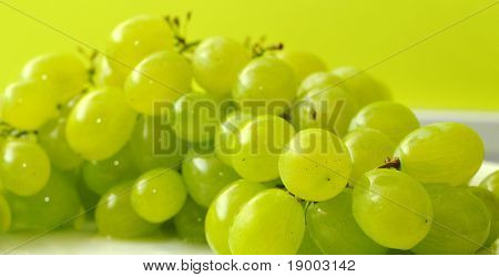 Fine white grapes
