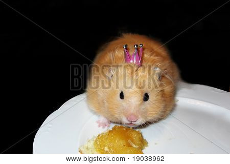 Cute Hamster With A Crown