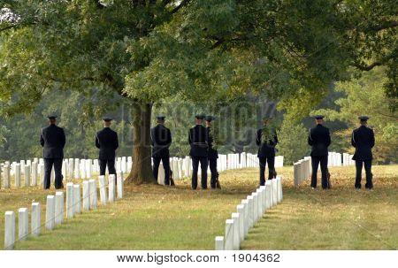 Awaiting Salute