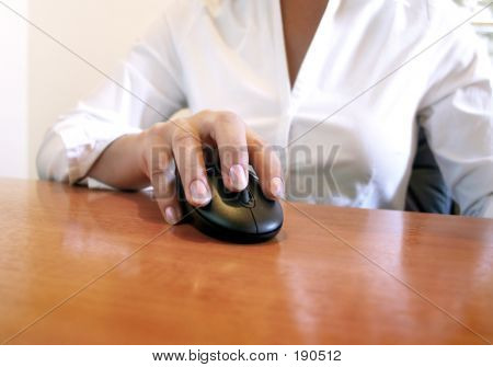Hand On The Mouse Series