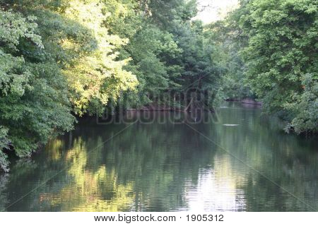 Beautiful Reflection Of Trees In River