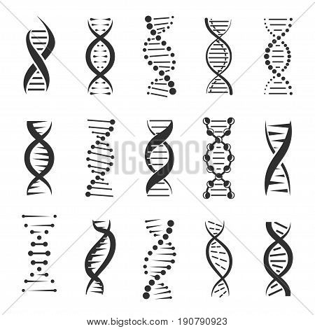 poster of DNA helix, a genetic sign vector icons on a white background. Design elements for modern medicine, biology and science. Dark symbols of double human chain DNA molecule.