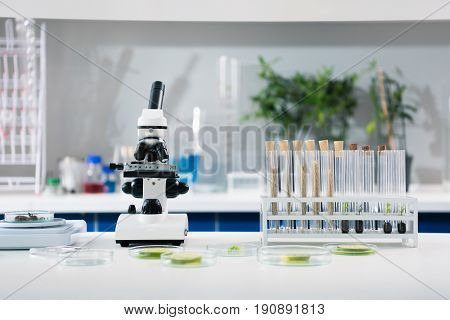 poster of Scientific tools and plants at workplace in modern biological laboratory