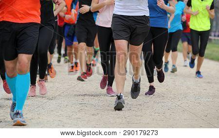 Many Runner Run At Country