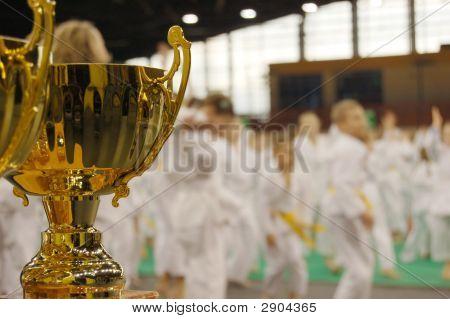 Torneo de Karate