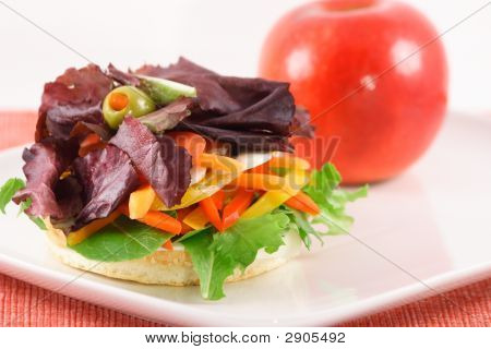 Fresh Organic Vegetable Sandwich