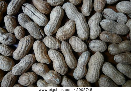 Close-Up Shelled Peanuts