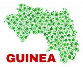 Vector Marijuana Republic Of Guinea Map Mosaic. Template With Green Weed Leaves For Weed Legalize Ca poster