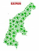Vector Cannabis Saipan Island Map Collage. Concept With Green Weed Leaves For Cannabis Legalize Camp poster