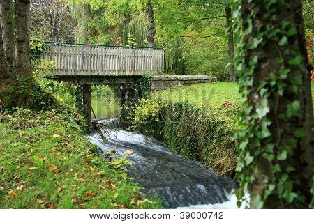 Bridge in forest on waterfall