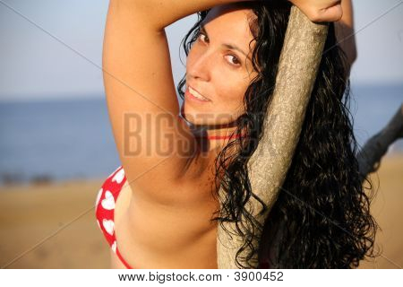 Bikini Girl Lying On Tree At Beach