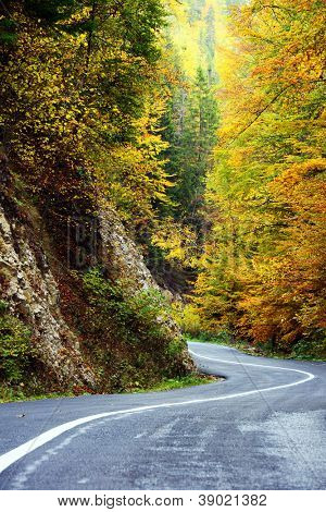 Mountain Road in fall colors