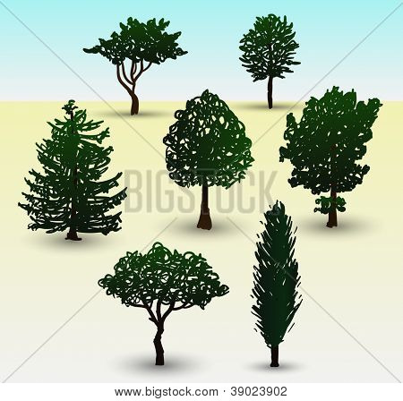 Hand drawn illustration depicting types of evergreen and deciduous trees