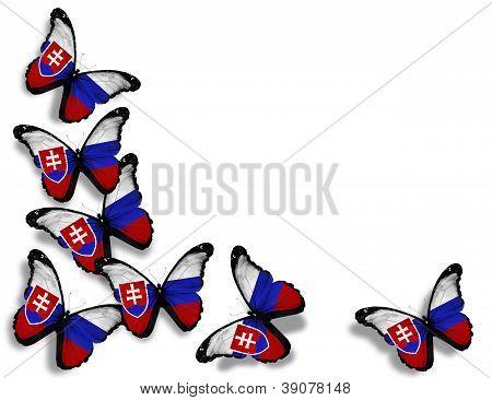 Mariposas de la bandera del eslovaco, aisladas sobre fondo blanco