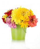 bouquet of beautiful summer flowers in bucket, isolated on white