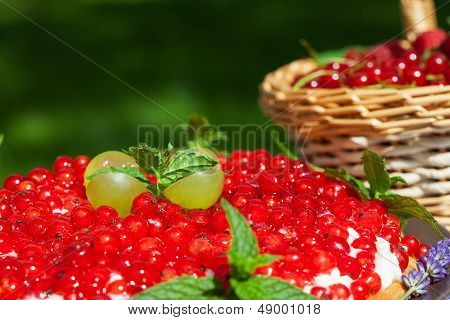 Cake With Red Currants