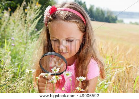 Little Girl Exploring The Daisy Flower Through The Magnifying Glass Outdoors