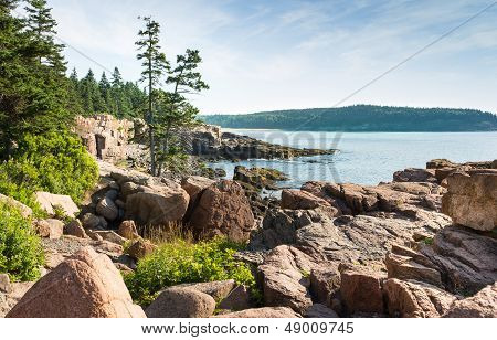 Picturesque Acadia National Park Shoreline