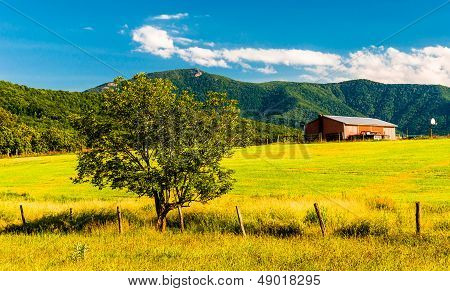Barn, Tree And View Of The Appalachians In The Shenandoah Valley, Virginia.