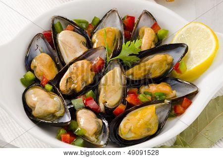Spanish Cuisine. Mussels In Sauce. Mejillones A La Marinera.