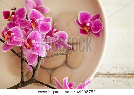 SPA still life with orchid flowers. pure water